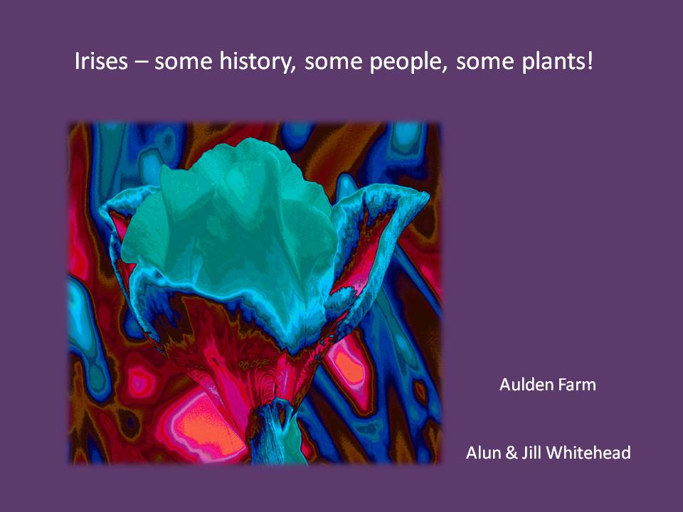 Irises: Some History, Some People, Some Plants!